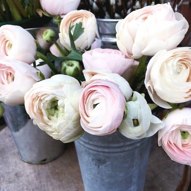 blush ranunculus spring wedding