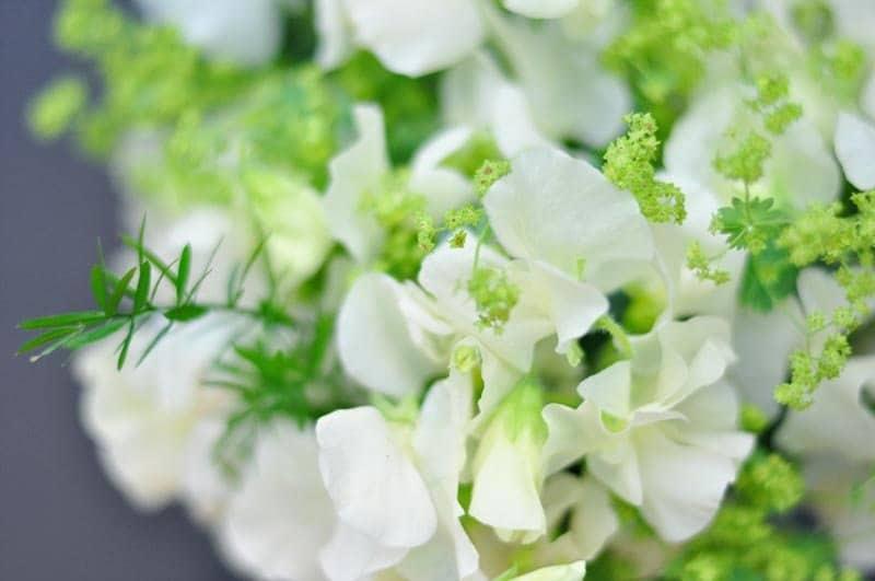 berkshire florist green parlour